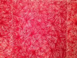 """E' Rosso"" di Pamela Ferri_Foto di Fabio Turri"